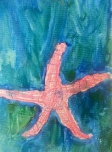 S2014starfish